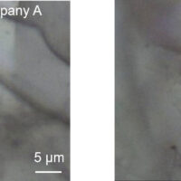 Identification and discrimination of the components in eye shadow by Raman micro-spectroscopy